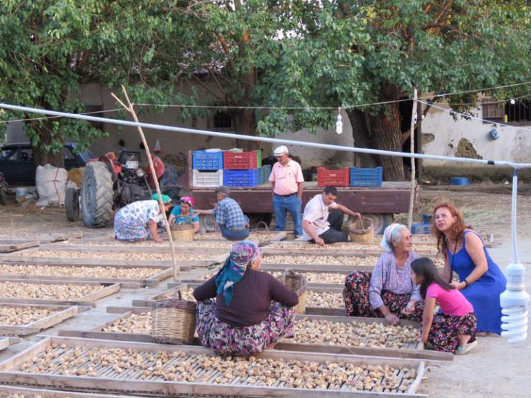 Bir Yudum Köy: Mursallı